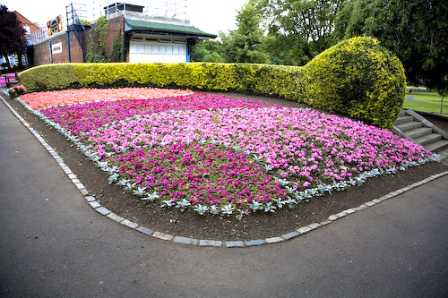 FLOWER BED IN PEOPLES PARK, DUN LAIGHAIRE