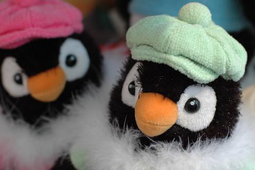 Penguins in hats