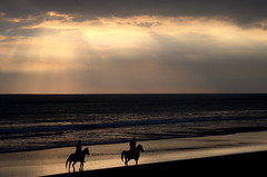 Riding Off Into The Sunset (dubbie) Tags: sky horses bali beach indonesia sunsets 100v10f mostinteresting horsebackriding kudeta canonef28135mmf3556isusm scoreme445 judgmentday56 xgf03 x0301 x0302 x0303 x0304 x03shortlisted