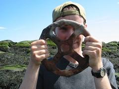 found art (eternal_seahorse) Tags: travel quebec roadtrip stlawrenceriver