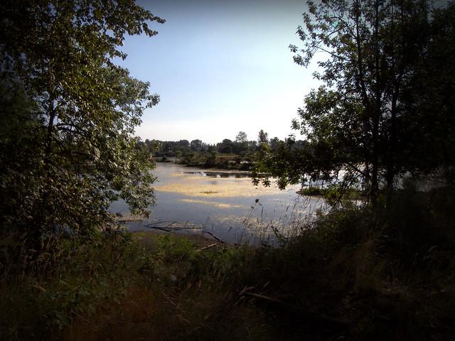 The Ponds 2