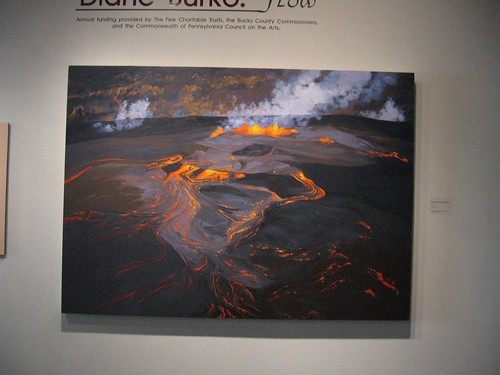 Diane Burko, Flow