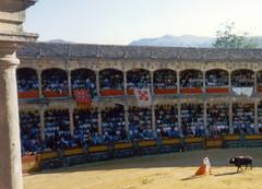 Plaza de Toros de Ronda Real Maestranza (-Merce-) Tags: espaa geotagged spain bull andalucia bullfighter ronda bullfight malaga lidia toro torero corridadetoros goyesca realmaestranza franciscoriveraordoez torobravo geo:lat=367448 geo:lon=516911 geo:tilt=0 mmbmrs