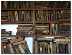 Well read (jurek d.) Tags: synagogue poland books wodawa thecontinuum jurekd top20jewish
