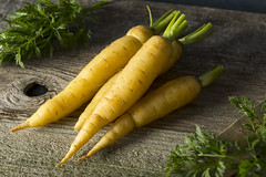 Raw Organic Yellow Baby Carrots (brent.hofacker) Tags: agriculture background beautiful bunch carrot carrots colorful diet dieting edible food fresh garden green group harvest health healthy healthyeating heap herb ingredient leaf natural nature nutrition orange organic pile plant produce raw ripe root sweet tasty tuber vegan vegetable vegetarian vitamin whole yellow yellowcarrot yellowcarrots
