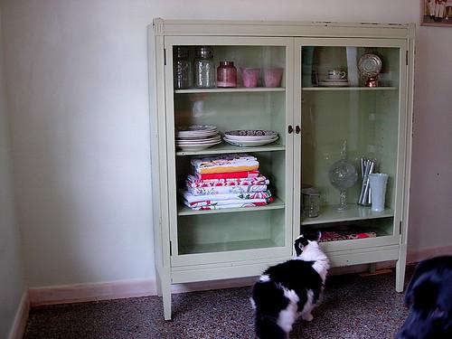 mint.cabinet