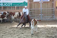 BJ1A9203 (yoann.coin) Tags: horse france western cutting equitation ncha remoray