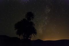 Sahara Nights (K13) Tags: africa trip sky sahara night stars star noche sand desert via arena morocco galaxy estrellas nights desierto marruecos palmera zagora bereber lactea ka13 kaxiii