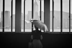 I Am Still Here (Anna Kwa) Tags: love window monochrome rain skyline hongkong hope nikon missing waiting tears heart frame d750 always starferry   iamstillhere afsnikkor24120mmf4gedvr annakwa