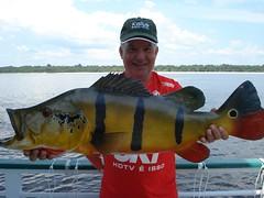 Amazonia 2012 (22)