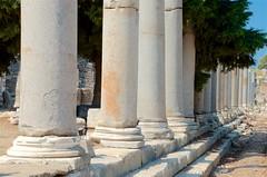 Column of Columns (hecticskeptic) Tags: turkey ephesus libraryofcelsus templeofhadrian bouleuterion nymphaeumtraiani markamorgan