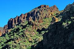 8118_Oak Canyon (jerome648) Tags: arizona grandcanyon oakcreekcanyon oakcreek