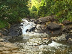 Meenmutty Falls, Wayanad, Kerala (Harish Kumar N) Tags: india beautiful trekking photography rocks day outdoor hiking kerala falls clear greenery wayanad meenmutty calicut kozhikode