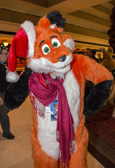 DSC_0035 (Acrufox) Tags: chicago illinois furry midwest december ohare rosemont convention hyatt regency 2014 fursuit furfest fursuiting acrufox mff2014