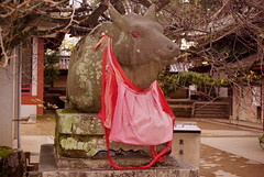 The Cow and the Bib (kewpiedollchan) Tags: statue japan japanese cow kyoto shrine traditional bib kitano tradition tenmangu ushi kamishichiken ushisan
