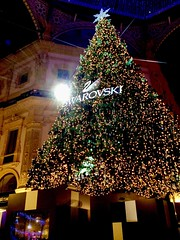 Milan Swarovski Christmas (giannipaoloziliani) Tags: christmas city italy tree colors night lights milano citylife christmastree luci swarovski albero natale colori riflessi reflexion alberodinatale lusso galleriavittorioemanuele cristals swarovsky cristalli swarovskytree vittorioemanuelegallery christmascity milancity luxuo