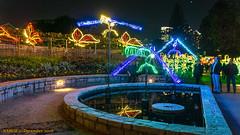 Atlanta, GA: Atlanta Botanical Garden Garden Lights (Christmas) Exhibit (nabobswims) Tags: atlanta botanicalgarden christmaslights georgia lightroom nabob nabobswims sonya6000 us unitedstates