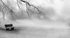 Take a seat (marcmayer) Tags: bw white black mood mystisch mystic landscape nebel mist misty fog winter cold snow seat nature natur outdoor nikon d5200 nikkor 50mm f18 reif frost frosty tree baum