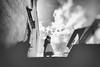 Fotografo Matrimonio Frosinone (Fotografo Matrimonio Roma (Francesco Russotto)) Tags: borgodeilecci fotografimatrimoniofrosinone fotografomatrimoniofrosinone serviziofotografico sora viterbo creativo fotografi photographer reportage wedding