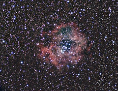 Rosette_06 (madmiked) Tags: astrophotography wideangle deepsky rosettenebula ngc2244 ngc2237 ngc2246 ngc2239 ngc2238