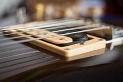 Aria CS-400 Bridge Pickup (Role Bigler) Tags: aira ariacs400 bridgepickup camera cardinalseries detail egitarre gitarre guitar humbucker instrument japan madeinjapan musicalinstrument musikinstrument saiten strings zebrapickup bokeh bokehlicious electricguitar zebra