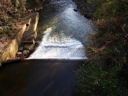 Weir, Avon Lwyd, Monmouthshire-Brecon Canal Aqueduct, Pontymoile, Pontypool 28 December 2016