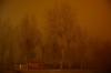 NIEBLA, 2016... (Alberto Fer.) Tags: niebla diciembre invierno nikon 5100 paisaje noche nocturna atardecer frio nube arboles tordesillas valladolid castilla y leon españa spain