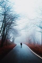 Moody Walks (R.Hawkins) Tags: uk fog mood moody contrast old cold spooky gloucester gloucestershire england united kindgom britain cranham panswick road