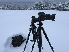 Oh yeah, love the outdoors❤️❤️❤️ Winter Snow Cold Temperature No People Outdoors Day Nature Iphone6 IPhone IPhoneography Photography Gear DSLR Tripods Photography Themes Copy Space Canon Pentax Manfrotto Benro Lowepro (Nick Pandev) Tags: winter snow coldtemperature nopeople outdoors day nature iphone6 iphone iphoneography photography gear dslr tripods photographythemes copyspace canon pentax manfrotto benro lowepro