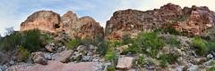 Burro Mesa Pour-off Arroyo (BongoInc) Tags: bigbendnationalpark chihuahuandesert westtexas cactus desertlandscape