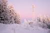 (coco_cn) Tags: germany mummelsee winter schwarzwald blackforest sunnset tree white snow wandern winterzauber entspannung winterliche ausflug fuji 23mm xt1