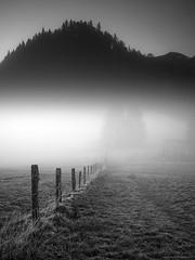 under the spell of the fog, Im Bann des Nebels (scubaluna) Tags: fog nebel wind langzeitbelichtung longexposure outdoors nature landscape scene scenics scenery poles weidezaun zaun wiese winter season december eigenthal switzerland bigstopper grauverlaufsfilter blackandwhite monochrome schwarzweiss vertical hochformat feucht wet motion blurredmotion mood tranquil nebelstimmung scubalunaphotography olympusesystem omdem1 perspective trees hill shadow illumination sunlight