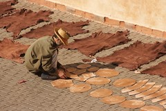 laying out (diminoc) Tags: drying curing leather suede morocco marrakech sun jilaba man guy alone streetphotography