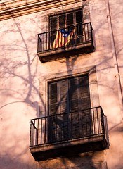 Carrer La Ramblas, Barcelona (that petrol emotion) Tags: barcelona spain apartment tree setting sun sunshine flag catalonia independence anutonomous iberian balcony street carrerlarambla lasramblas shadows catalonian