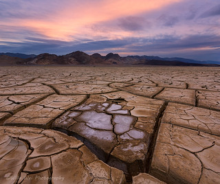 Mud Cracks - 2