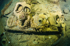 DSC02196 - nippo - gas masks (montereydiver) Tags: sonya5100 truklagoon chuuk wreck shipwrecks underwater scuba ocean wrecks underwaterphotography nippo nippomaru gasmasks