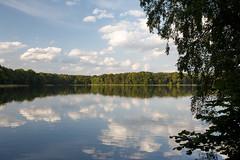 am Großen Pälitzsee