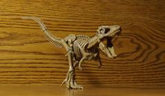 Pose Tyrannosaur (novuscarpus) Tags: pose skeleton japanese action figure tyrannosaur