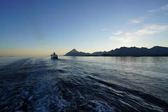 MS Nordnorge (RS_1978) Tags: sea mer water norway mar norge eau meer wasser mare ship no norwegen acqua 海 schiff hurtigruten nordland море gewässer bodyofwater étenduedeau sonyalpha7rii