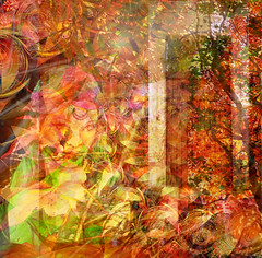 Closing the Door On Summer As Autumn Approaches (virtually_supine popping in and out) Tags: autumn trees face leaves photomanipulation gate vividcolour textures fractal layers abstraction digitalartwork photoshopelements9 mixmasterchallenge2intheartisticmanipulationgrouprecipebychefsandy kreativepeopletreatthis97sourceimageshadesofautumnbyabstractartangel77