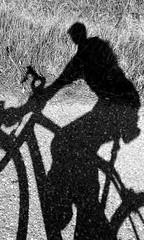 Self-silhuette (Giangaleazzo) Tags: road street shadow portrait monochrome grass bike wheel tarmac sport metal modern self trek climb blackwhite strada ombra rad samsung erba smartphone ciclismo bici brake fiber asphalt telefono biancoenero ruota bicicletta sportivo selfie silhuette monocrome salita fatica monter freno salire cyclism