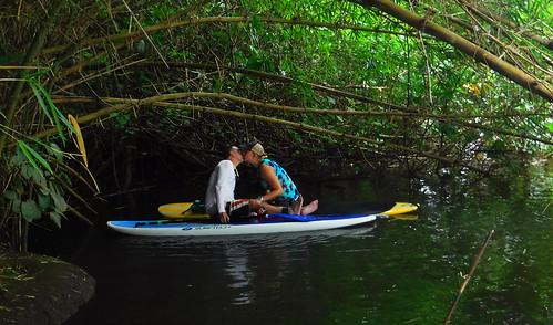 2015 Kauai Paddle Adventure  (165)