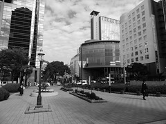 Flower Road, Sannomiya (Mathieu Perron) Tags: life road city bridge people bw white black flower monochrome japan nikon noir perron nb kobe  mp motomachi blanc japon personne ville gens vie mathieu   sannomiya     harbourland     p520  zheld  bw