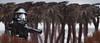 Scarif (delgax) Tags: lego lucasfilm starwars toyphotography toys toy rogueone delgax disney desert tropical scarif deathtrooper death trooper brickarms crazybricks
