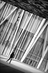 bye bye miss american pie (bostankorkulugu) Tags: missamericanpie rollerblades museublau bluemuseum barcelona forum parcdelforum plaçaleonardodavinci nat museublaudebarcelona herzogmeuron architecture ccib museum museu diagonalmar modern urban art eacts eactsannualmeeting centredeconvencionsinternacionaldebarcelona girl light spain congress catalonia catalunya europe korkut blackandwhite bw bostankorkulugu bostanci bostan blackwhite black monochrome sepia graphism graphics geometry white decisivemoment alone