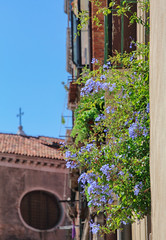 Details (Sophai900) Tags: venice venecia green venezia italia italian architettura italy calle europe canon travel venedig venesië venise venetië veneza sky flowers