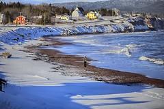 Walk on the beach (Danny VB) Tags: canon 6d winter snow gaspesie quebec hiver canada neige beach plage capdespoir dannyboy