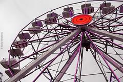 Roda Gigante (Fannykyta) Tags: ibirapuera flores rodagigante