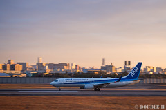 Itami Sky Park 2017.1.1 (15) JA63AN / ANA's B737-800 (double-h) Tags: omdem10markii mzuikodigitaled1442mmf3556ez rjoo itm osakaairport itamiairport 大阪空港 伊丹空港 airplane 飛行機 伊丹スカイパーク itamiskypark ja63an ana 全日空 b737 b737800