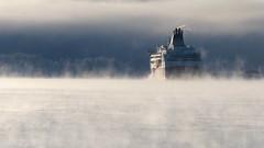 Helsinki - Tallinn cruiseferry in sea smoke at -20°C (Helsinki, 20170106) (RainoL) Tags: 2017 201701 balticsea cold degerö ferry fin finland fz200 geo:lat=6016438282 geo:lon=2501146085 geotagged helsingfors helsinki hundholmen january koirasaari kronobergsfjärden kruunuvuorenranta kruunuvuorenselkä laajasalo nyland sea seafog seasmoke ship suomenlinna sveaborg uusimaa vikingline winter 20170106 vikingxprs